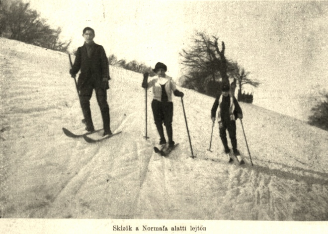 Лижники у парку Нормаф, Будапешт, 1914 рік